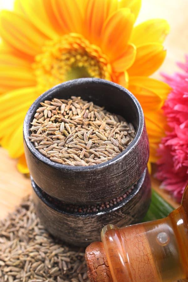 Cumin seeds. Beautiful shot of cumin seeds in bowl stock photos