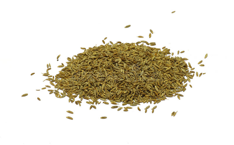 Cumin seeds royalty free stock images