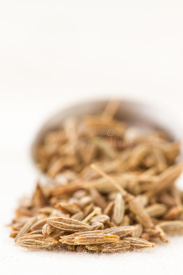 Cumin seeds and spoon. Cumin seed closeup with a spoon in the background stock image