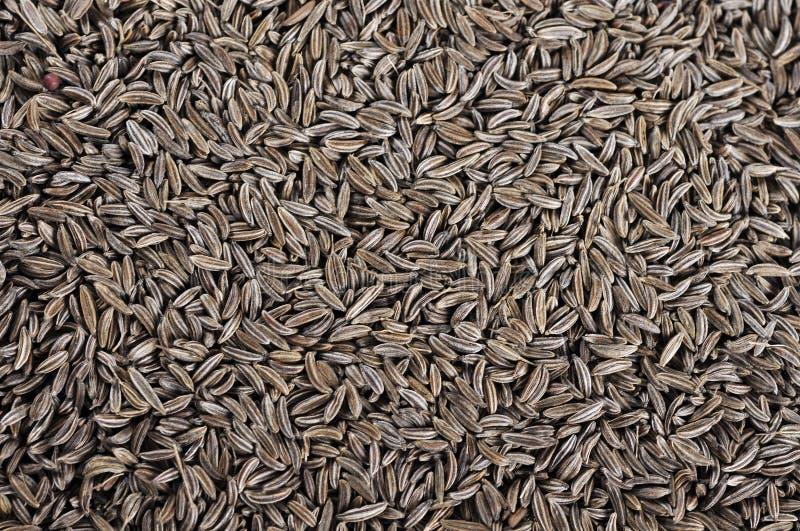 Cumin seeds texture royalty free stock photo