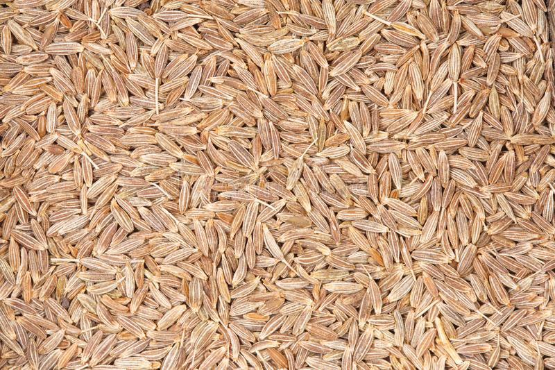 Cumin seeds texture, full frame background. Most popular spice in the world for your unique project. royalty free stock photography