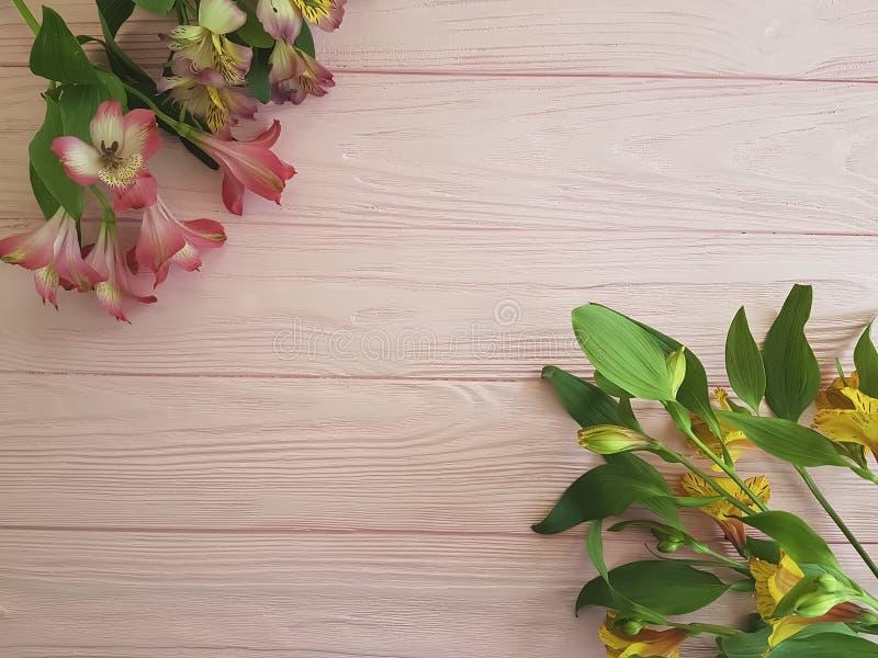 Cumprimentos de florescência do vintage do frescor do aniversário do Alstroemeria em um fundo cor-de-rosa do quadro de madeira foto de stock royalty free