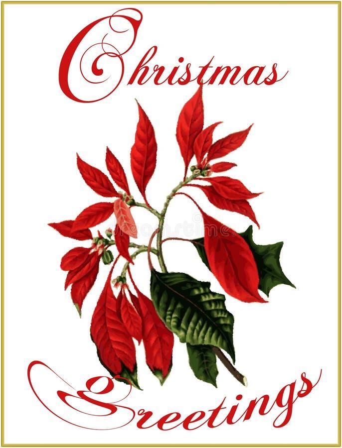 Cumprimentos do Natal. ilustração royalty free