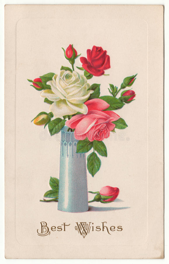 Cumprimentos rosas no cartão do vintage do vaso ilustração royalty free