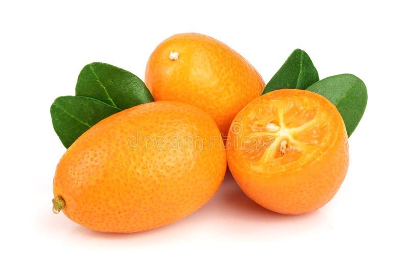 Cumquat或金桔与在白色背景关闭隔绝的叶子  图库摄影