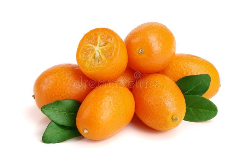 Cumquat or kumquat with leaf isolated on white background close up.  royalty free stock photo