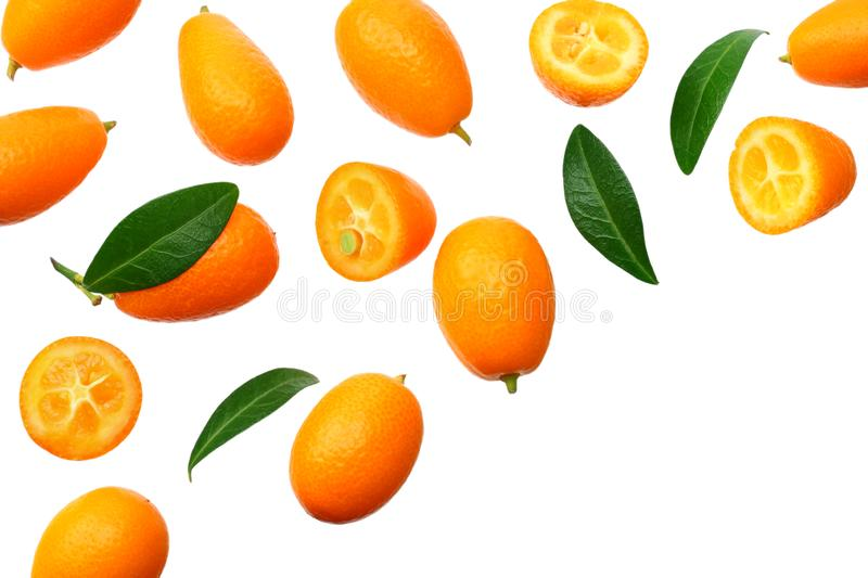 Cumquat or kumquat with leaves isolated on white background. top view stock images