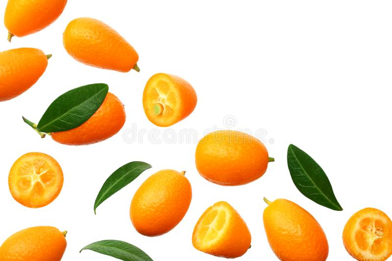 Cumquat or kumquat with leaves isolated on white background. top view royalty free stock image