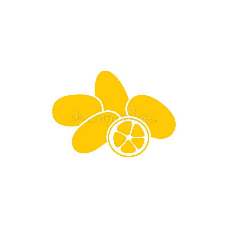 Cumquat of kumquat met plak op witte dichte omhooggaand wordt geïsoleerd die als achtergrond stock illustratie