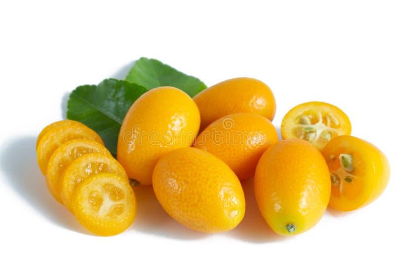 Cumquat ou kumquat com a folha isolada no fundo branco Fim acima foto de stock