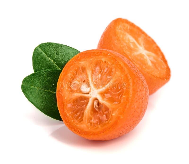 Cumquat ou kumquat com a folha no fim branco do fundo acima foto de stock royalty free