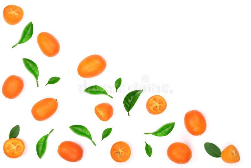 Cumquat ou kumquat com a folha no fundo de madeira azul com espaço da cópia para seu texto Vista superior Teste padrão liso da co imagens de stock royalty free