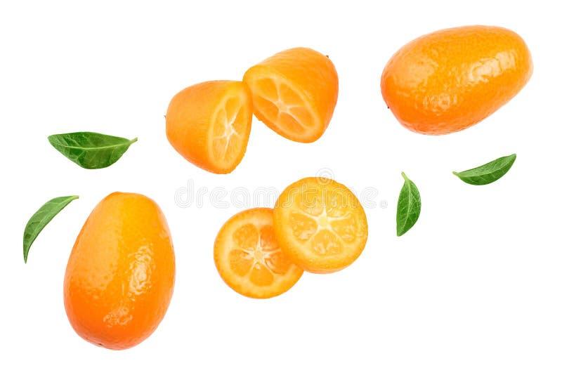 Cumquat ou kumquat com os slies isolados no fundo branco Vista superior Configura??o lisa foto de stock