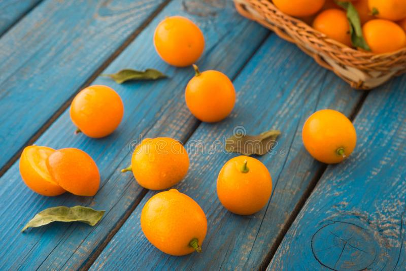 Cumquats, kumquats or pygmy wild oranges with green leaves stock images
