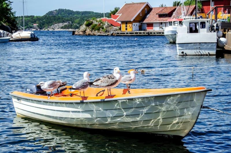 Cumująca łódź w małej cieśninie fotografia royalty free