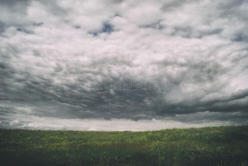 Cumuli tempestosi del cirro sopra i vasti prati verdi thunderstorm fotografia stock