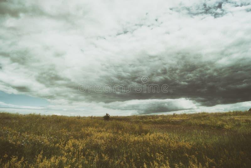 Cumuli tempestosi del cirro sopra i vasti prati verdi thunderstorm fotografia stock libera da diritti