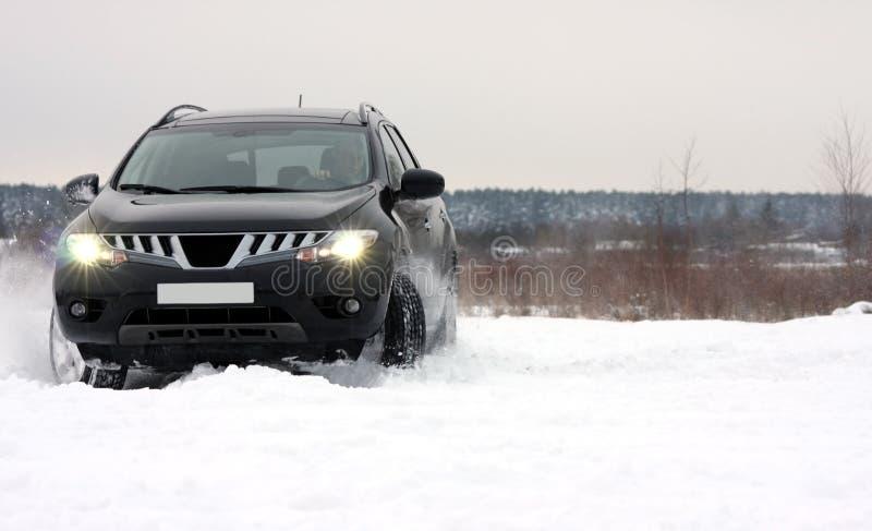 Cumulo di neve fotografia stock libera da diritti