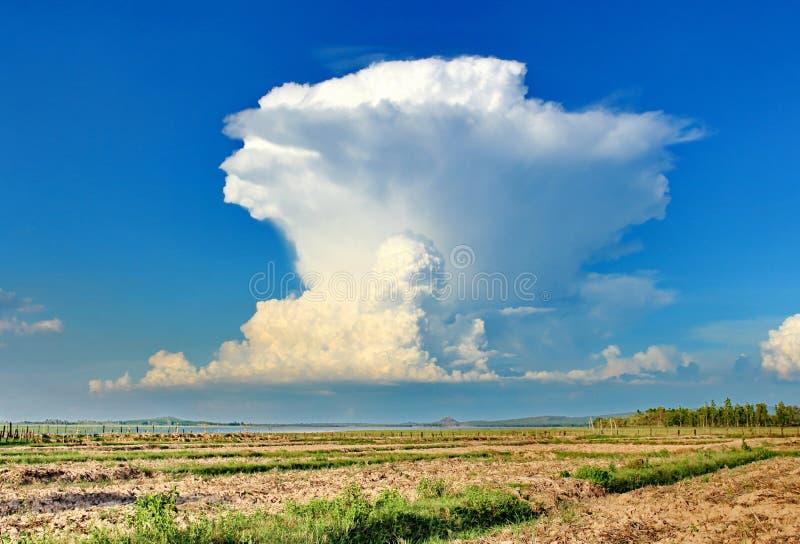 Cumulonimbusmoln arkivbild
