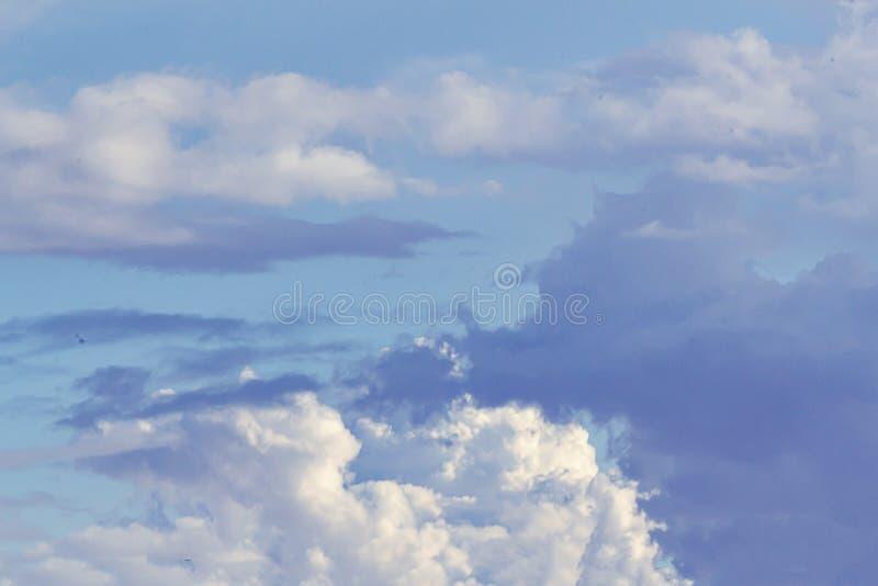 Cumulos, nimbus, si appanna il ND grigio e bianco lanuginoso, su un grande cielo blu fotografia stock libera da diritti