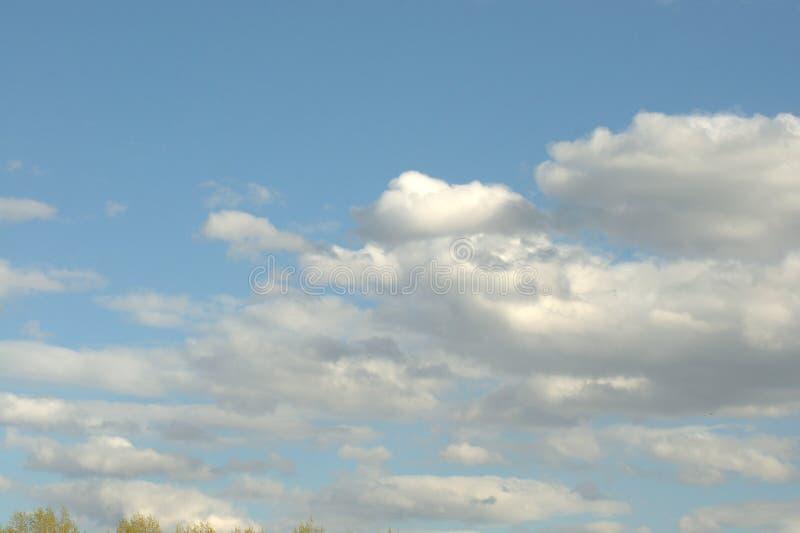 Cumulus blancs contre un ciel bleu cloudscape photographie stock