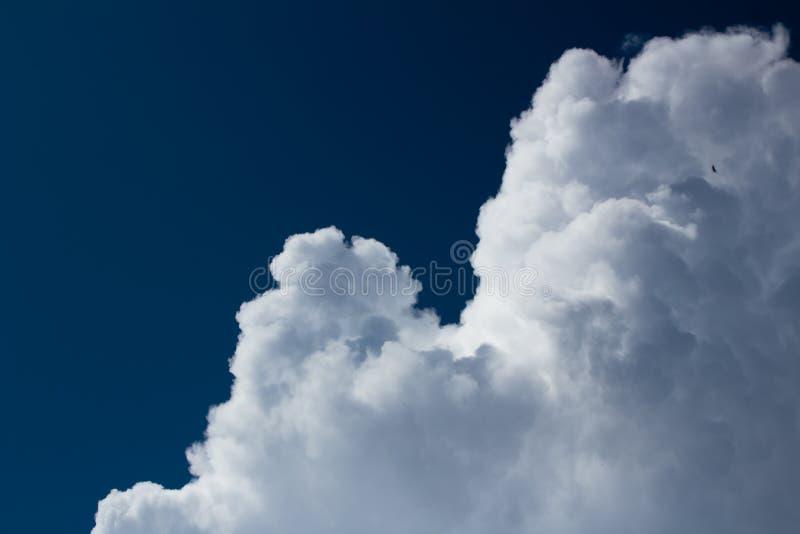 Cumulus blancs sur le ciel bleu-foncé photo libre de droits