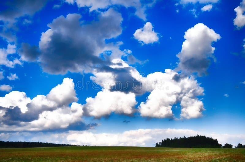 Cumulus chmury przy lata światła dziennego above zieloną łąką typową dla lata lub wiosny sezonu zdjęcie stock