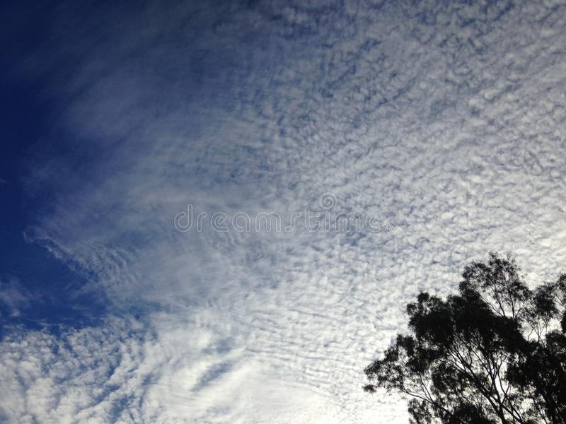 Cumulus Cloud. Altocumulus is a middle-altitude cloud genus that belongs mainly to the stratocumuliform physical category characterized by globular masses or stock photography