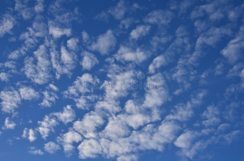 Cumulus sur le ciel bleu image stock