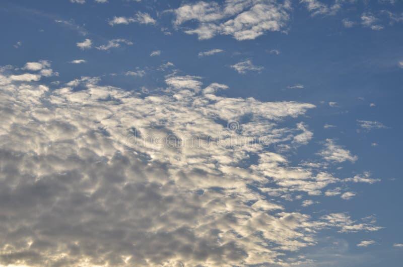 Cumulus sur le ciel bleu photographie stock libre de droits
