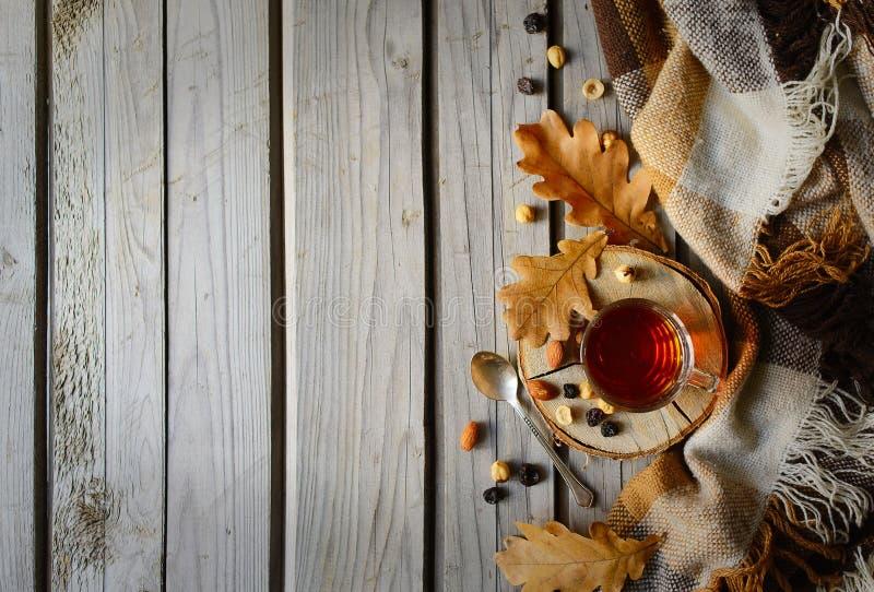Cuo di tè con il plaid e le foglie su legno fotografia stock libera da diritti