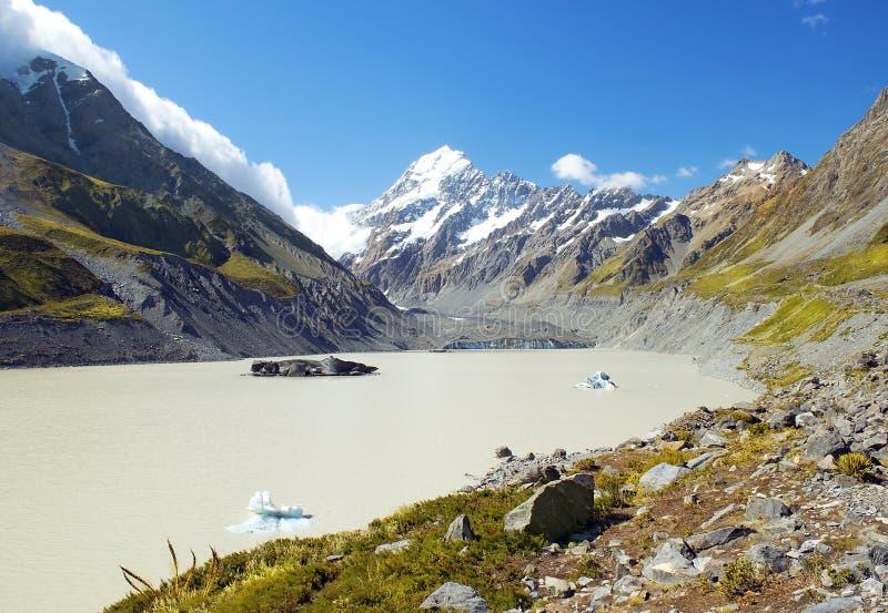 Cuoco del supporto e lago Pukaki, Nuova Zelanda immagine stock