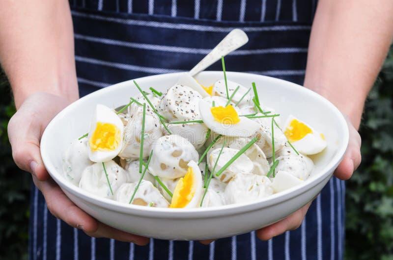 Cuoco unico domestico che tiene una ciotola di insalata di patata fotografie stock libere da diritti