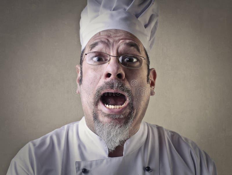 Cuoco unico sorpreso immagini stock