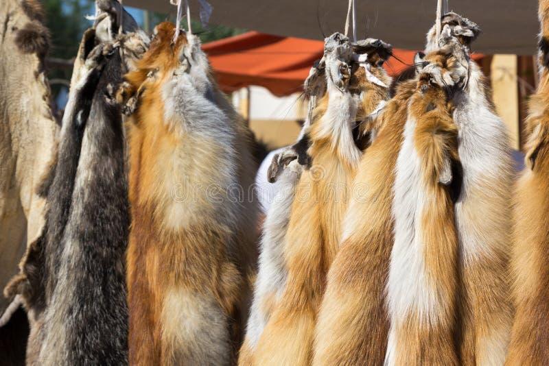 Cuoii di caduta degli animali da pelliccia sulla corda fotografia stock libera da diritti