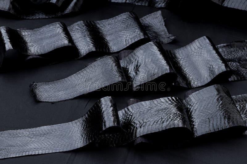 Cuoio genuino dello snakeskin della cobra, pelle di serpente, struttura, animale, rettile su un fondo nero fotografia stock libera da diritti