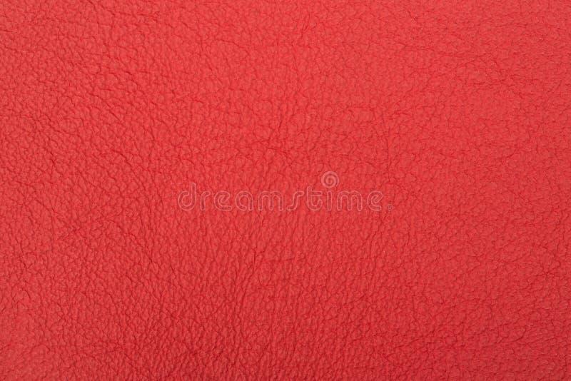 Cuoio rosso immagine stock