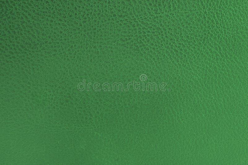 Cuoio verde fotografia stock libera da diritti