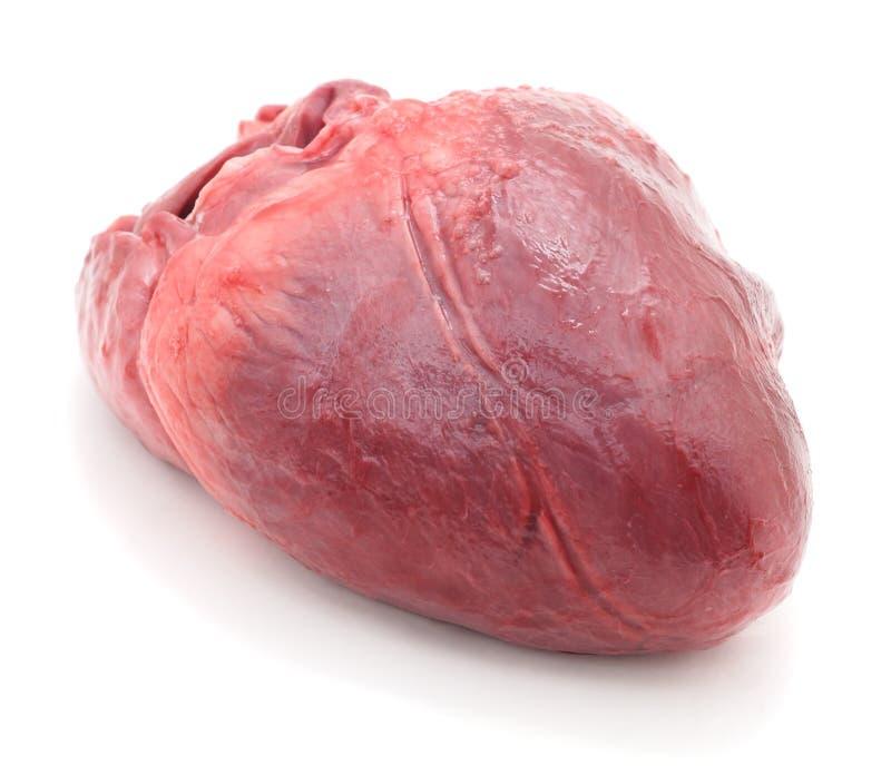 Cuore crudo della carne di maiale fotografia stock