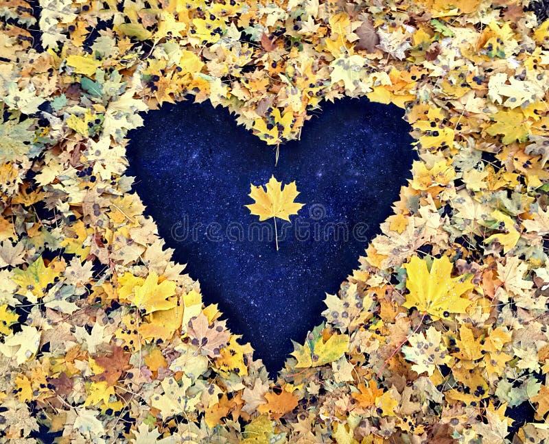 Cuore dalle foglie di autunno su asfalto immagini stock libere da diritti