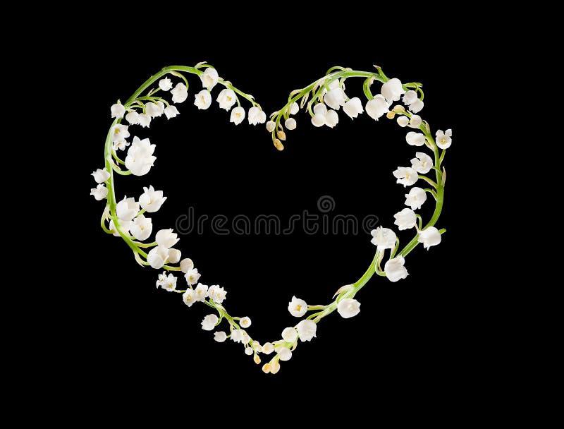 Cuore dei lillies fotografia stock