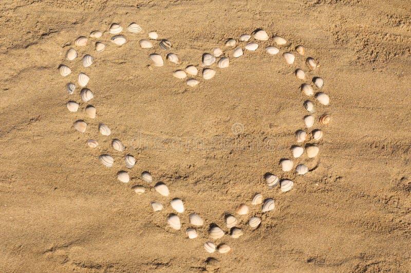 Cuore del Seashell fotografia stock libera da diritti
