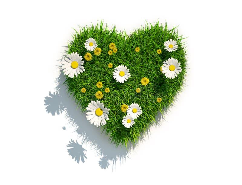 Cuore dell'erba su fondo bianco illustrazione vettoriale