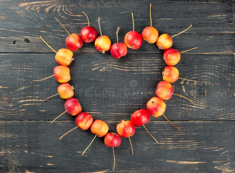 Cuore delle mele di paradiso fotografia stock