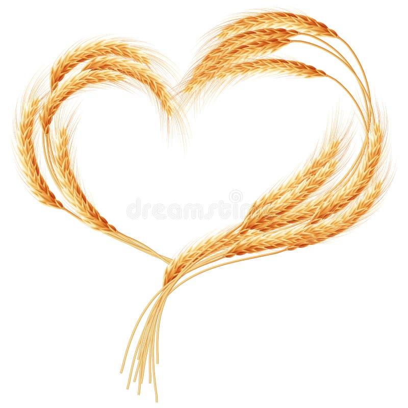 Cuore delle orecchie del grano sul bianco ENV 10 illustrazione vettoriale