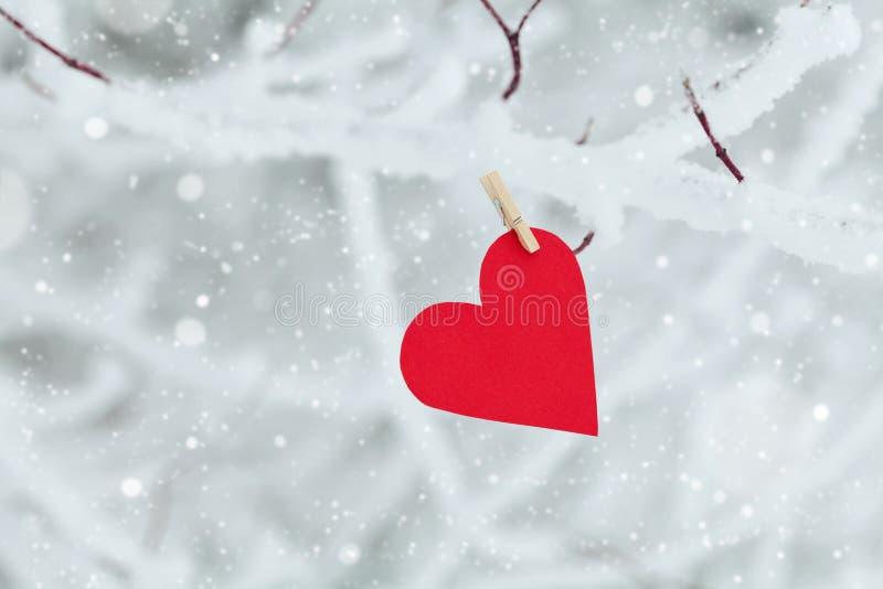 Cuore di carta che appende sul ramo di albero della neve per il giorno di biglietti di S. Valentino fotografia stock libera da diritti
