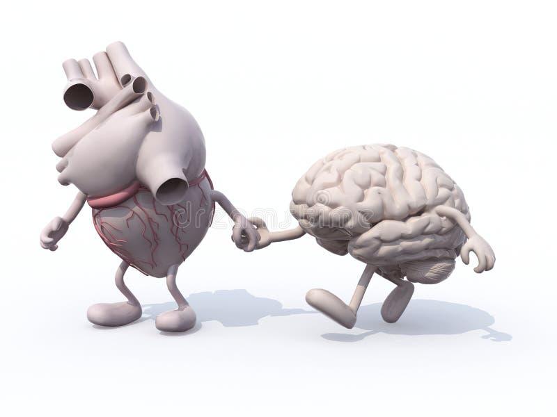Cuore e cervello che camminano congiuntamente illustrazione vettoriale