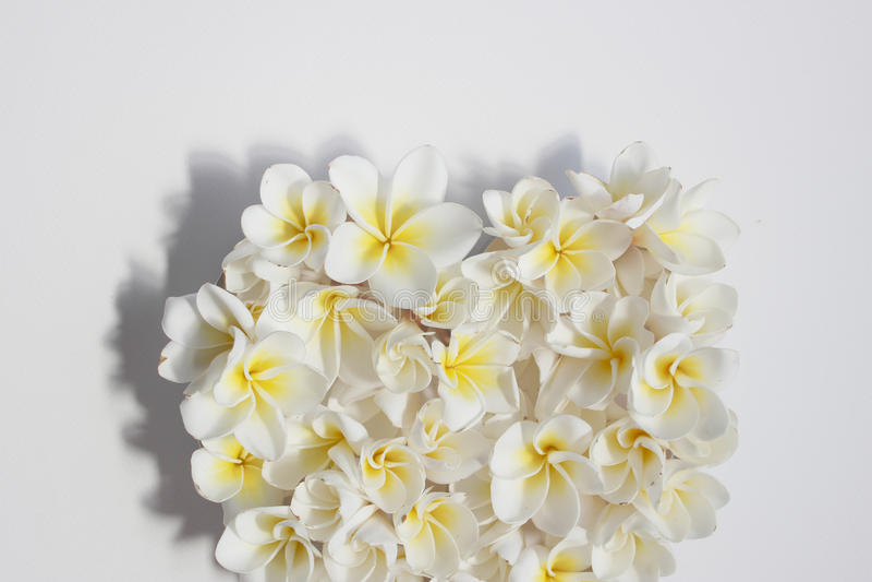 Cuore floreale di estati con i fiori immagine stock libera da diritti