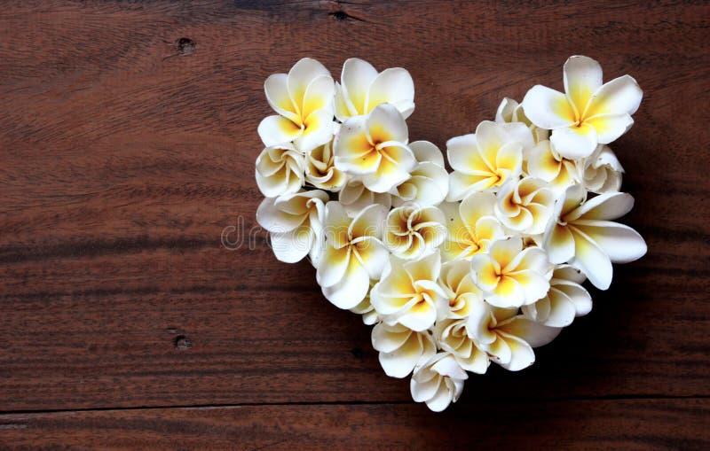 Cuore floreale di estati con i fiori immagini stock