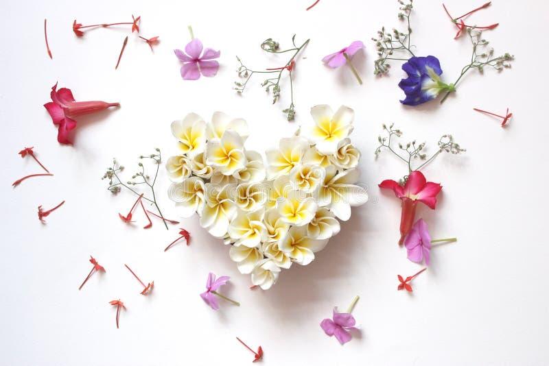 Cuore floreale di estati con i fiori fotografia stock